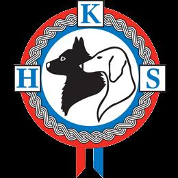 Grb HKS-a